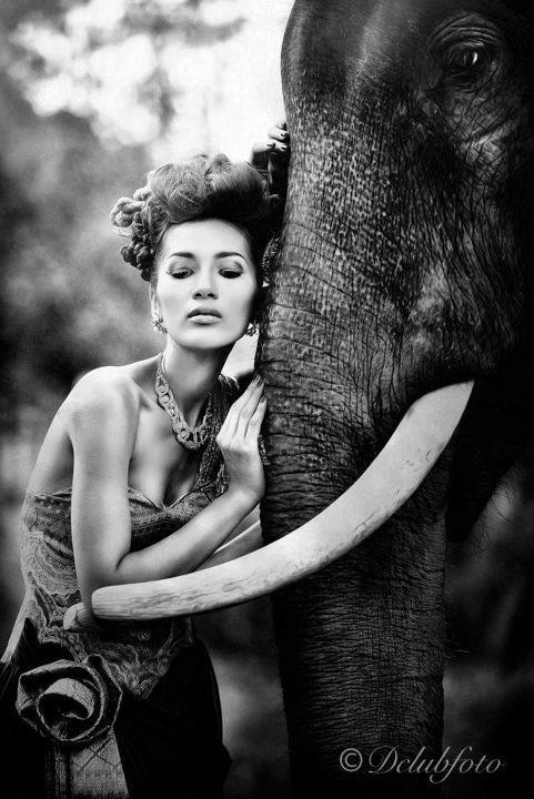 Bell Nassara @Model Society International (MSI) Modeling Agency in Bangkok Thailand By Miss Josie Sang (75)